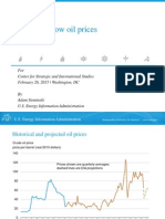 Effects of low oil prices - Adam Sieminski