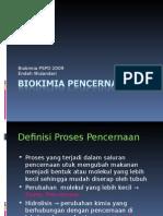 Biokimia Pencernaan
