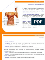 9 Sistema Digestivo