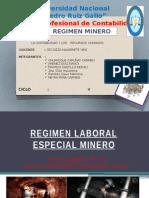 Regimen Minero Trabajo1 Laboral