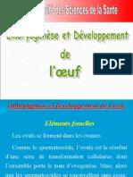 2 Elément Femelles(France)
