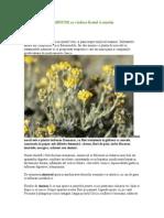 Planta romaneasca MINUNE ce vindeca ficatul si rinichii.doc