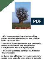 epistemologia4.ppt