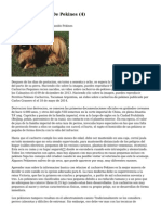 Article   Cachorros De Pekines (4)