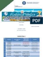 Planificarea Anuala 2014 - 2015
