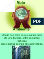 Meio Ambiente (P. Singer)