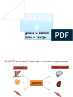 15 - Glikoliza