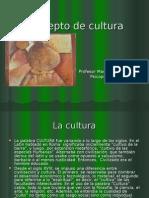 Concepto de la Cultura