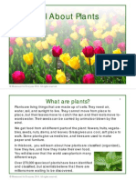 All About Plants Printable Book