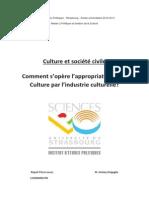2013_RISPOLI_Pierre-Lucas.pdf