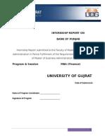 BANK of PUNJAB Internship Report