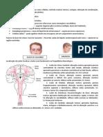 8.Roteiro Exame Físico - Neurológico