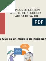 Modelo de Negocio y Cadena de Valor 212541