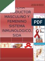 Sistema Reproductor Femenino y Masculino Terminado