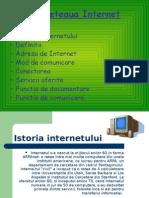 Reteaua Internet1 Fara Animatie5