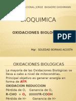 OXIDACIONES BIOLOGICAS.pptx