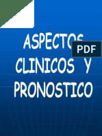 Tumores Mamarios - Tratamiento (Col. de Veterinarios) (1)