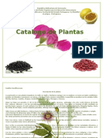 Catálogo Botánica
