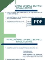 Fisiologìa Del Globulo Blanco