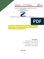 Proyecto sobre Vinculacion erica contraloria.docx