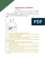 Dieta para higado graso pdf