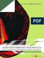 Echeto Sartori - Escrituras Híbridas y Rizomáticas