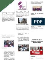 Ministerio de La Mujer y Poblaciones Vulnerables Del Perú Jh