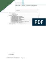 Herramientas Modernas de La Calidad y Gestion de Proyectos[1]