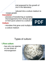 Types of Culture Media
