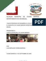 PLAN ESTRATEGICO, CIUDAD BARRIOS