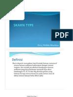 4.Skarn Type Deposit