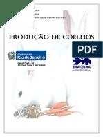 Produção de Coelhos