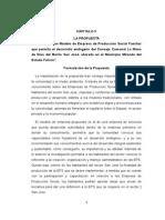 CAPITULO v Propuesta