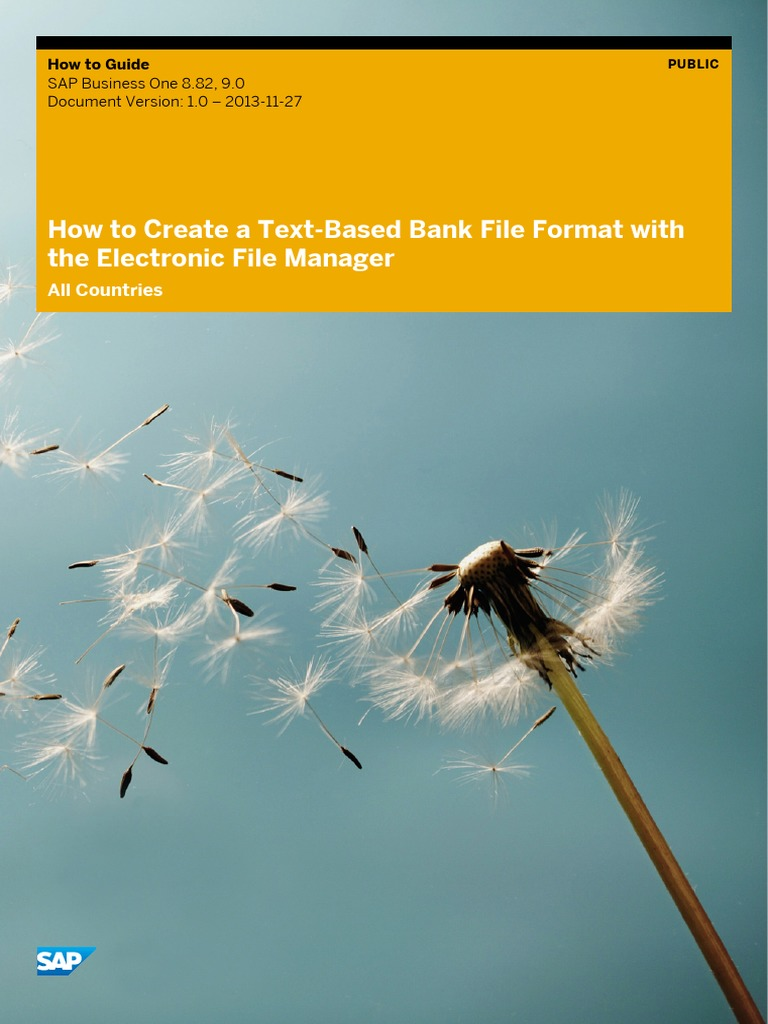 How to Create a Text-Based Bank File Format With the Electronic File