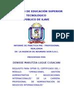 Informe Practica Preprofesional (1)