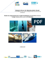 Rapport Charc Final Avril 2015