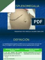 hepatoesplenomegalia-110526211030-phpapp02 (1).ppt