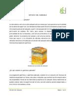 Geofisica aplicada_estudiodelsubsuelo