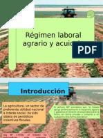 Regimen Especial Agrario y Acuicola