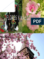 Flori Si Mascote