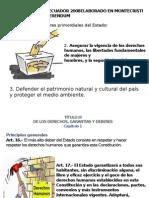 Constitución Del Ecuador Salud
