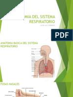 ANATOMIA DEL SISTEMA RESPIRATORIO.pptx