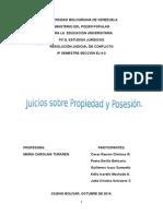 juicios sobre propiedad y posiciones e interdictos