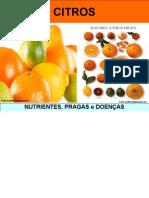 Citro s Nutrient Espr Agase Do en As