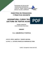Ensayo Linguistica Poetica y _geyder Barrancos