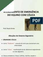 2015216_13815_Atendimento+de+emergência+do+equino+com+cólica.pdf