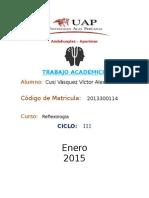 Reflexologia trabajo academico
