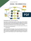 Natural Process Ielts Vietop - Nguồn Dcielts