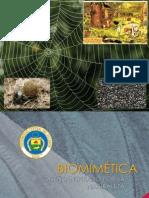 La Biomimética
