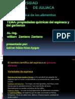 Espinaca y Garbanzo
